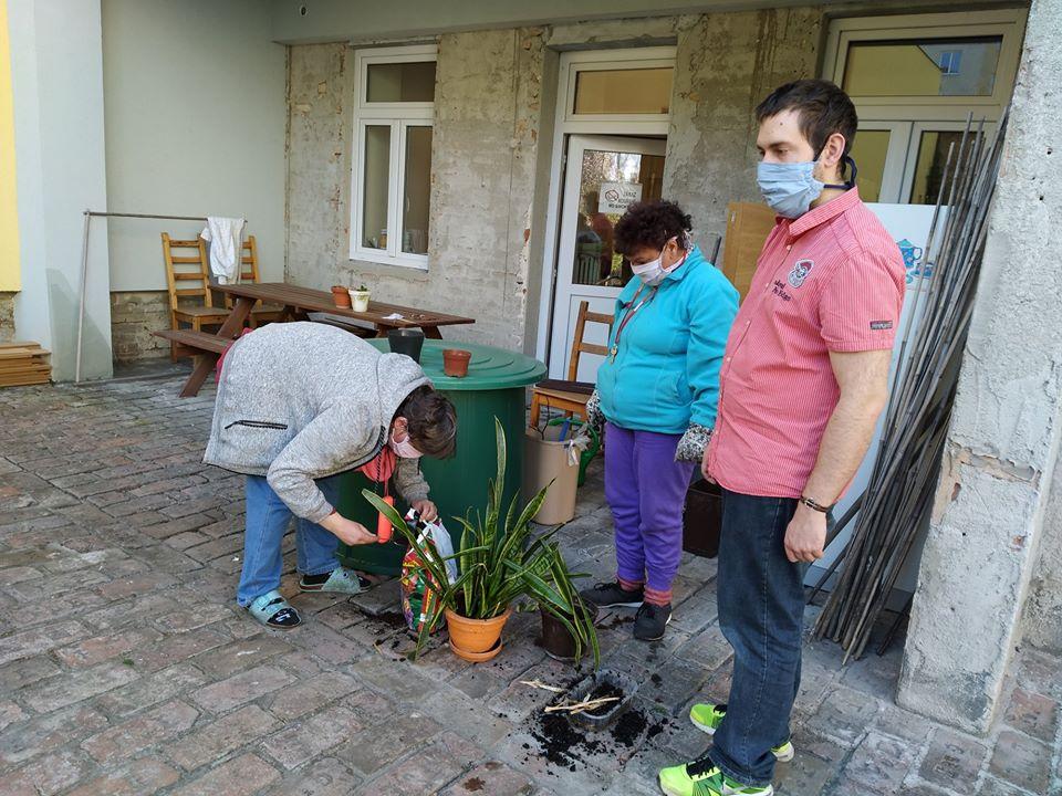 Chráněné bydlení ovečka Diakonie Brno - sázení květin